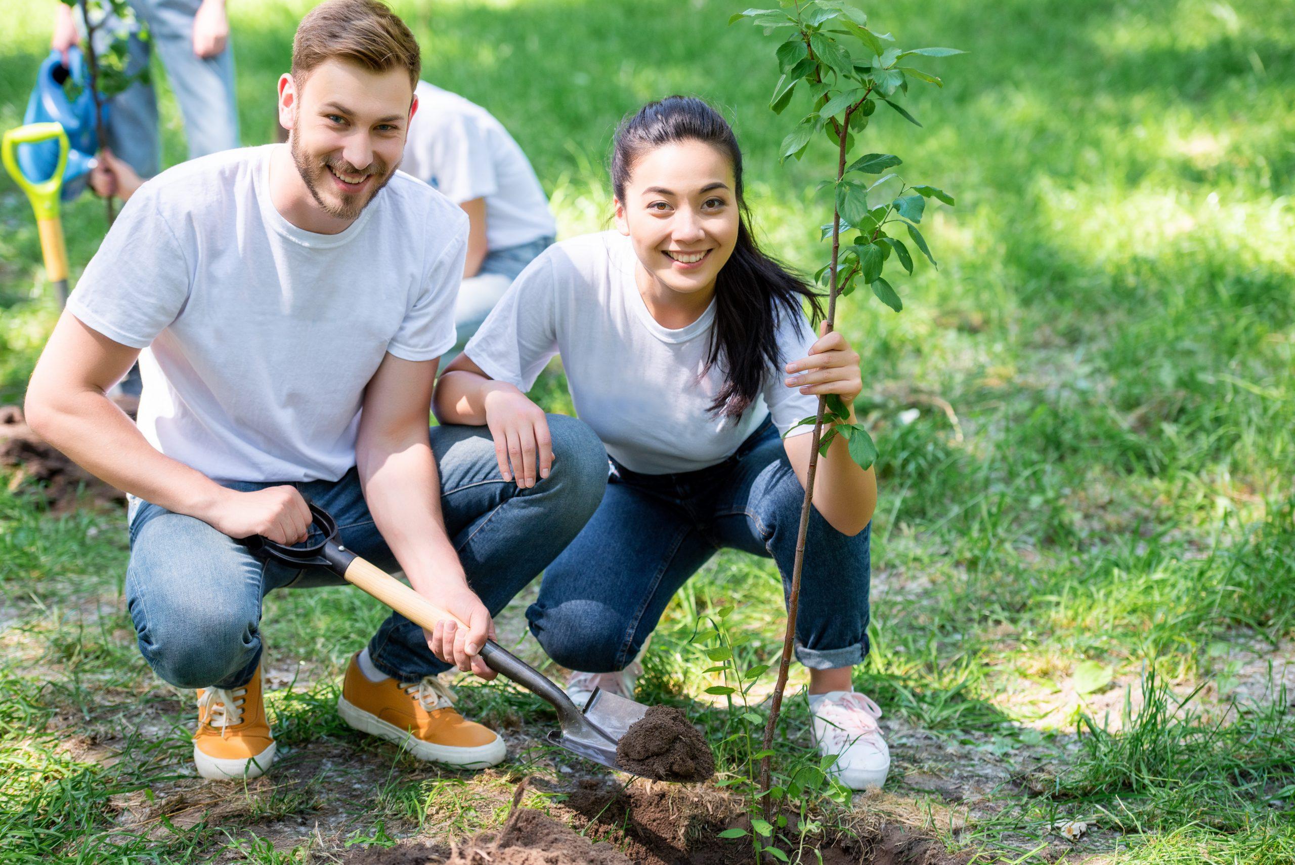 UV Assurance s'engage dans la plantation d'arbres